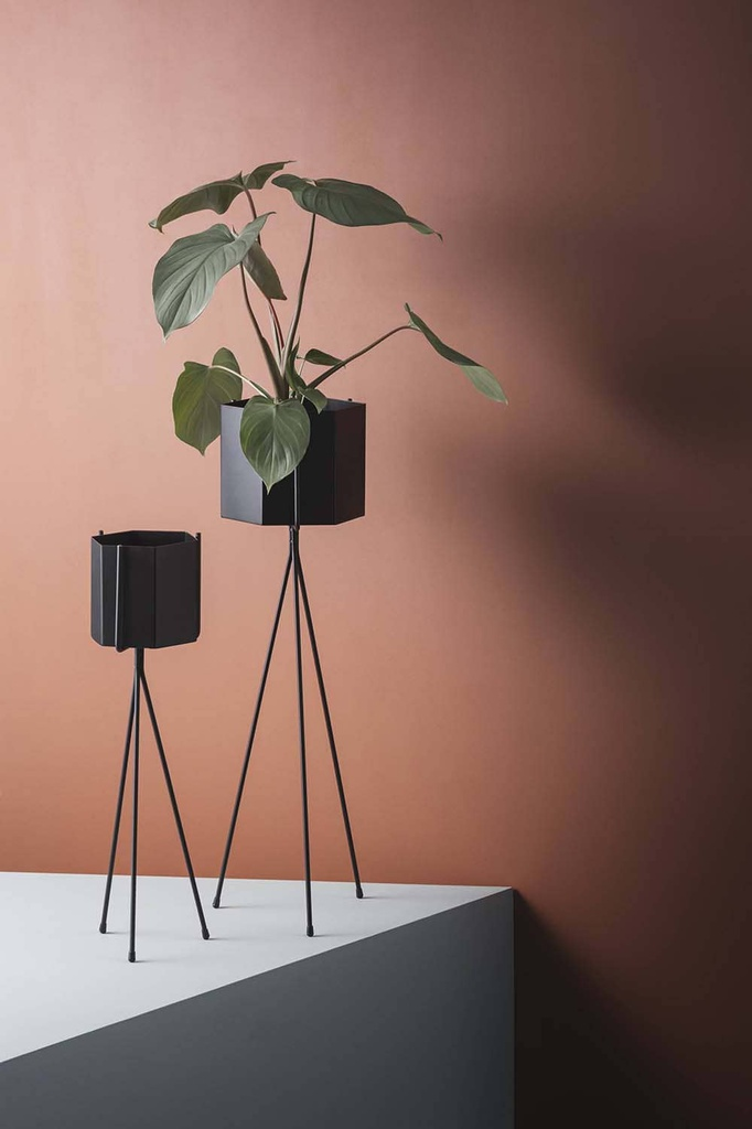 Plant Stand, Low
