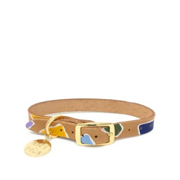 [FSND02500] Rock Candy, Multi, Dog Collar